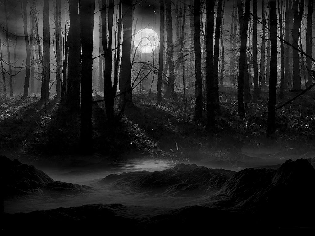 Dark.Forest